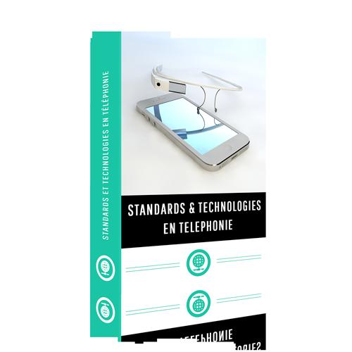 Les modèles et technologies de standards en téléphonie pro